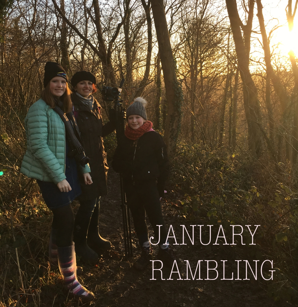January Rambling