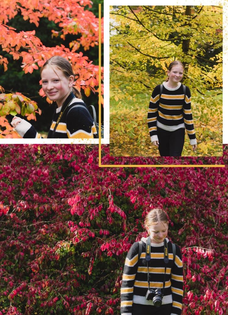 autumn page 2