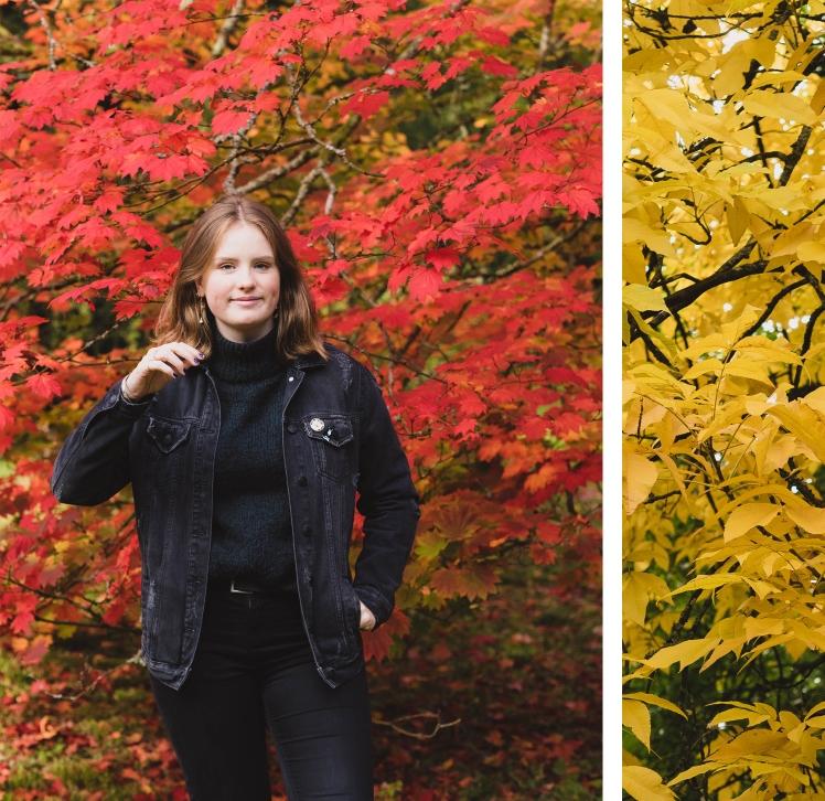 autumn page 3