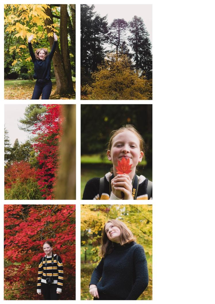 autumn page 4
